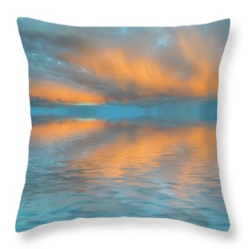 Fly Away With Me Throw Pillow by Jerry McElroy