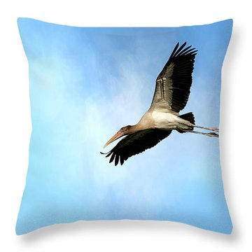 Fly By 2 Throw Pillow