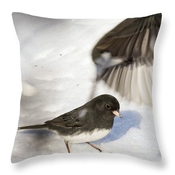 Fly By Throw Pillow by Gary Wightman