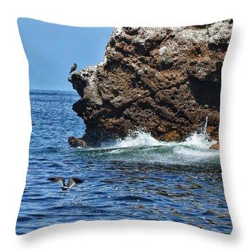 Fly By Splash Throw Pillow by Nikki McInnes