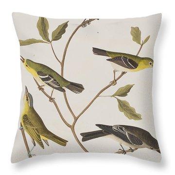 Fly Catchers Throw Pillow by John James Audubon