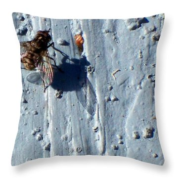 Throw Pillow featuring the photograph Fly On The Wall by Betty Northcutt