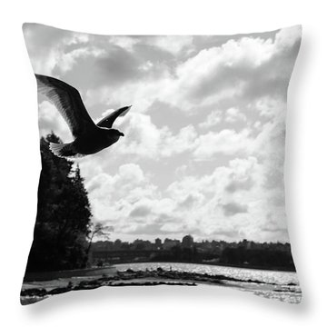 Fly Out Of Here  Throw Pillow