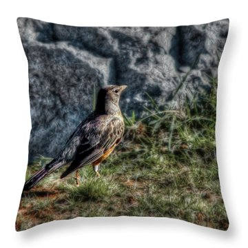 Throw Pillow featuring the photograph Fly Robin Fly by Pennie  McCracken
