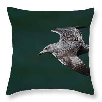 Throw Pillow featuring the photograph Flyby by Richard Patmore