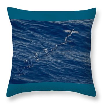 Flyer Throw Pillow