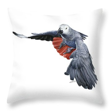 Flying African Grey Parrot Throw Pillow by Owen Bell