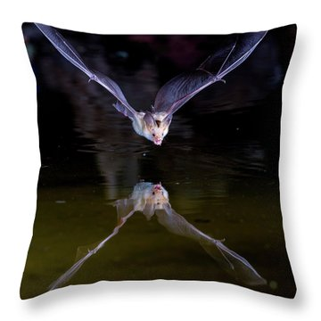 Flying Bat With Reflection Throw Pillow