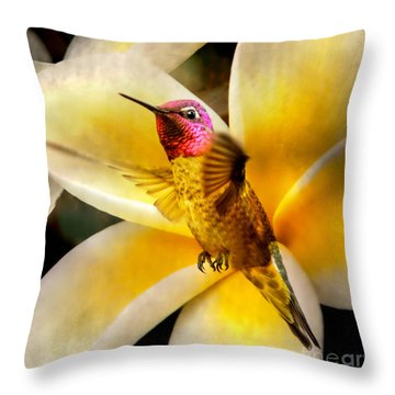 Flying Beauty Throw Pillow by David Millenheft
