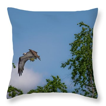 Throw Pillow featuring the photograph Flying Crappie by Onyonet  Photo Studios
