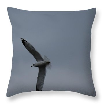 Throw Pillow featuring the photograph Flying High by Ramona Whiteaker