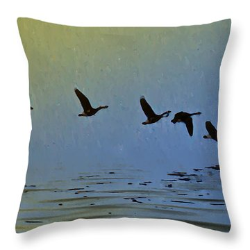 Flying Low Throw Pillow by Bill Cannon