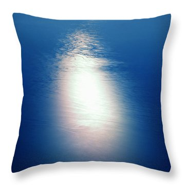 Throw Pillow featuring the photograph Flying Over The Ocean by Colette V Hera  Guggenheim