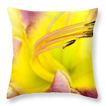 Flying Petals Throw Pillow by Marwan Khoury