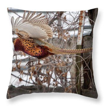 Flying Pheasant Throw Pillow