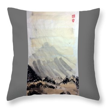 Flying Through The Open Sky Throw Pillow