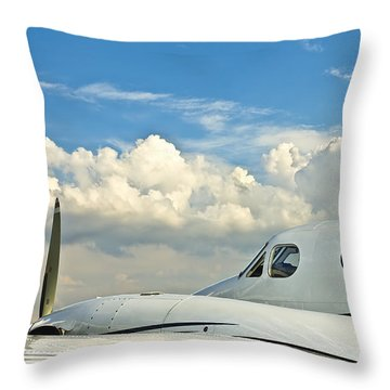 Flying Time Throw Pillow by Carolyn Marshall