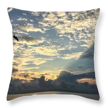 Flying To The Left Throw Pillow