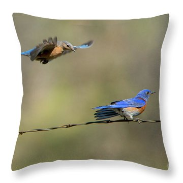 Flying To You Throw Pillow