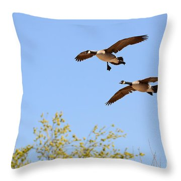 Flying Twins Throw Pillow