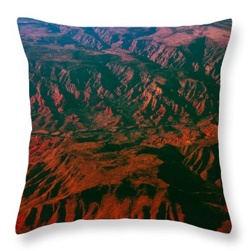 Flying West Throw Pillow