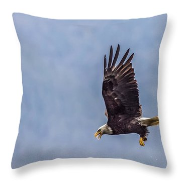 Throw Pillow featuring the photograph Flying With His Mouth Full.  by Timothy Latta