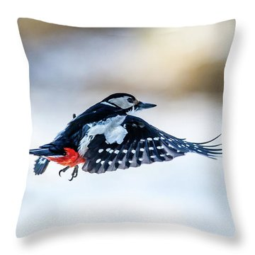 Flying Woodpecker Throw Pillow by Torbjorn Swenelius