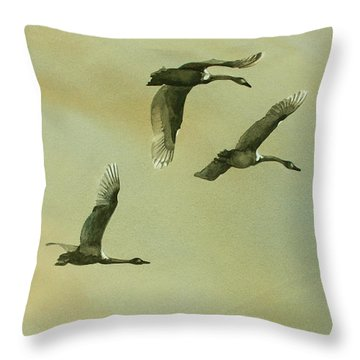 Throw Pillow featuring the painting Flyover by Kris Parins
