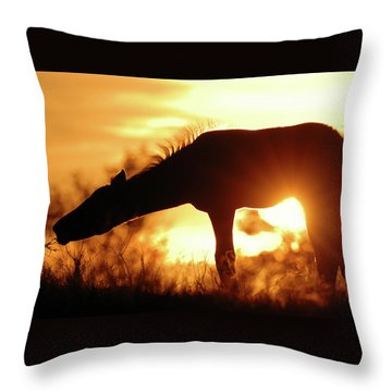 Foal Silhouette Throw Pillow