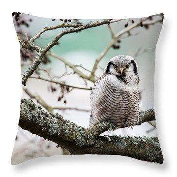 Focus On You Throw Pillow