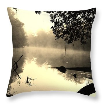 Fog And Light In Sepia Throw Pillow by Warren Thompson