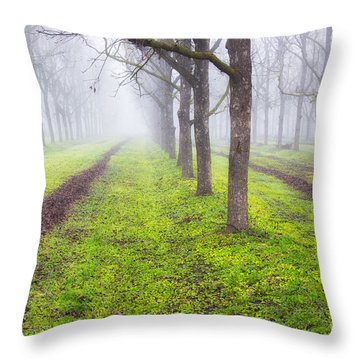 Fog And Orchard Throw Pillow