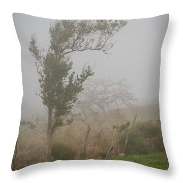 Fog And Wind Throw Pillow