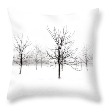 Fog And Winter Black Walnut Trees  Throw Pillow