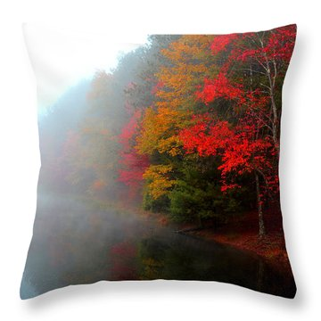 Clearing Fog Throw Pillow