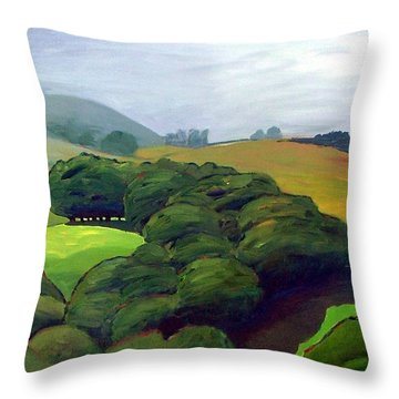Throw Pillow featuring the painting Fog Comes In by Gary Coleman