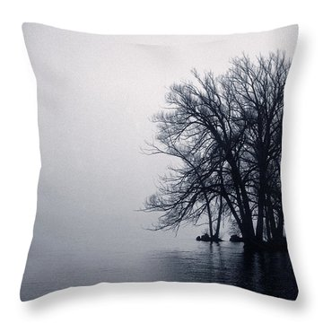 Fog Day Afternoon Throw Pillow