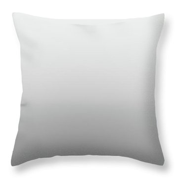 Throw Pillow featuring the photograph Fog Day by Bruno Rosa