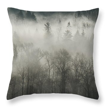 Throw Pillow featuring the photograph Fog Enshrouded Forest by Lisa Knechtel