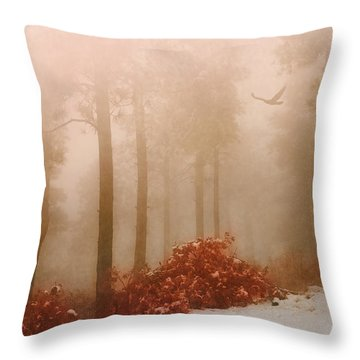 Fog IIi Throw Pillow