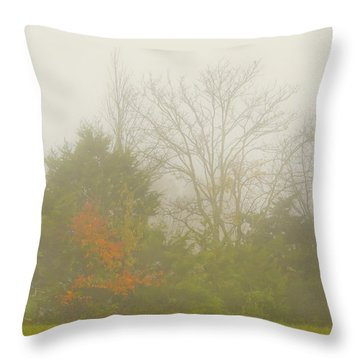Fog In Autumn Throw Pillow