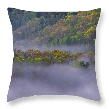 Fog In The Hills Throw Pillow