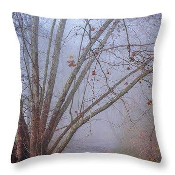 Fog On Buffalo Creek 1 Throw Pillow