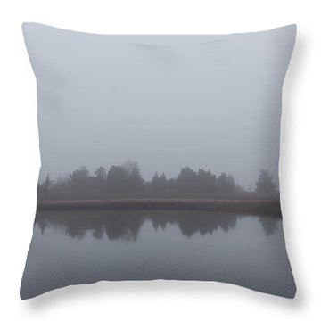 Throw Pillow featuring the photograph Fog On The Marsh by Andrew Pacheco