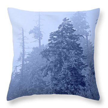 Throw Pillow featuring the photograph Fog On The Mountain by John Stephens