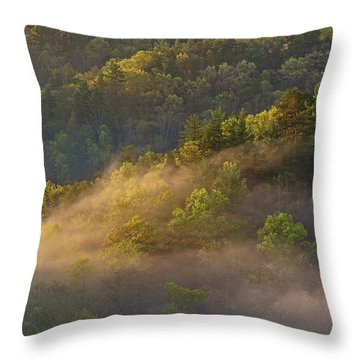 Fog Playing In The Forest Throw Pillow