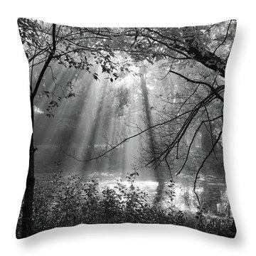 Fog Rays Throw Pillow