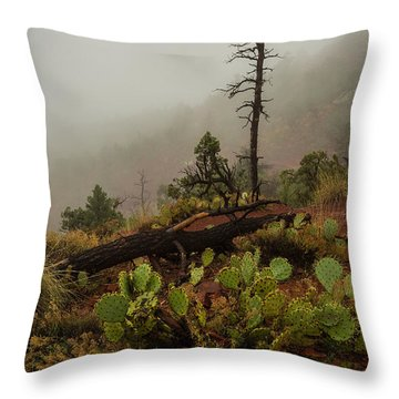 Fog Rolling In Throw Pillow