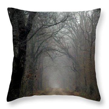 Fog Shrouded Lane  7861 Dp_2 Throw Pillow