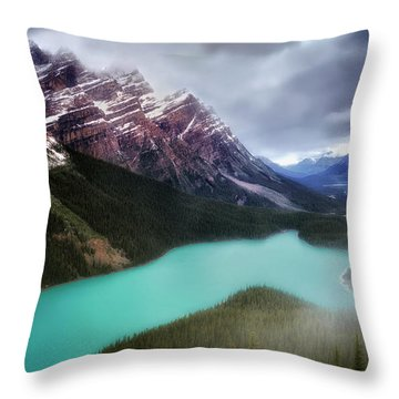 Fog Swirls Throw Pillow by Nicki Frates